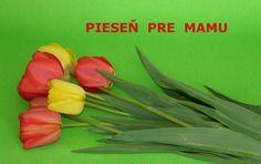 Pieseň pre mamu na Deň matiek Mather Day, Diy And Crafts, Ms, Blog, Blogging
