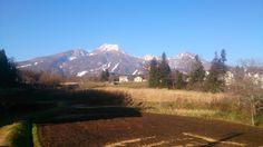 Myoko Snow Report 30 November 2015 + opening dates for Myoko ski resorts 2015. It's a beautiful day here in Myoko Kogen!