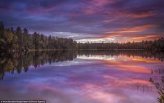 Peck Lake in Algonquin Park: Photographer Mark Brodkin, Spectacular mirror images of Canadian and American wilderness captured in lakes