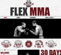 Art Template Website Wordpress Web Design Inspiration Ideas Martial Arts Combat Sport Theme