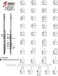 Free Flute Fingering Chart 1 - PDF | 1 Page(s)