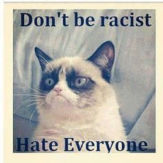 Grumpy Cat :)