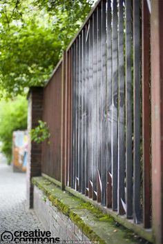 Urban street art - Art on the fence 5