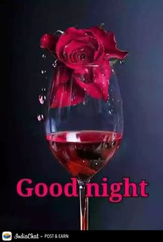 If You are Lokingh for Beautiful good Night Images with Love than we are providing you Best and unique good night images with love for whatsapp Good Night Msg, Good Night Qoutes, New Good Night Images, Good Night Prayer, Cute Good Night, Good Night Everyone, Good Night Blessings, Sweet Night, Good Night Wishes