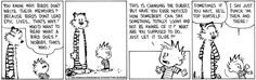 Calvin and Hobbes for June 08, 2013