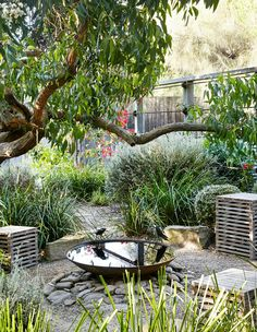 The Design Files Daily   Sunnymeade Garden Open This Weekend