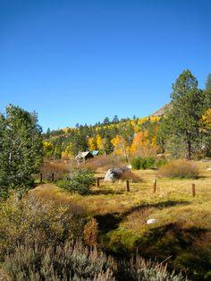 October around Carson Pass