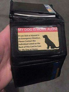 Genius! Every pet owner shoukd have one of these in their wallet, travel bag, dog travel kit!