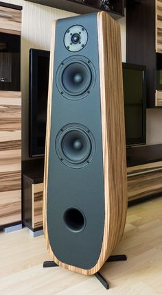 Beautifully made speakers, using lsp kit from Intertechnik