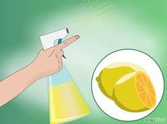 Image intitulée Make Homemade Cat Repellent Step 7