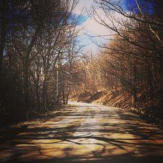 """#euro_shot #winter #webstagram #worldcaptures #tree #tagsta_bw #postcardsfromtheworld #phototag_it #photowall #park #loves_world #igcapturesclub #ig_superstaz #igworldclub #ig_captures #instaphoto #sunkissed_photos #sky_perfection #special_shots #sunkissed #vitosha #master_shots #mountain"" Photo taken by @doris_333 on Instagram, pinned via the InstaPin iOS App! http://www.instapinapp.com (03/08/2015)"