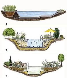 lagunage de bassin de jardin bassin pinterest bassin de jardin bassin et jardins. Black Bedroom Furniture Sets. Home Design Ideas