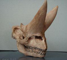 Arsinoitherium skull and mandible 02 by taburinsdino, via Flickr