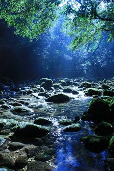 Amazing nature ... inviting peace & rejuvenation ... <3 www.24kzone.com
