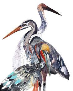 Watercolor trio of water birds - Pelican Heron and Crane  Archival Print by unitedthread on Etsy