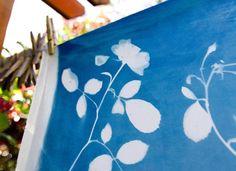 DIY sun printing for photosensitive fabrics and papers