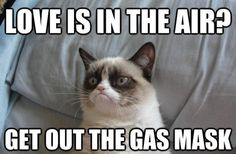 happy valentines day grumpy cat!  I needed this for Valentines Day!