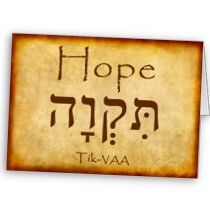 hope in hebrew | 2011 McKenzie College Sydney | Powered by Wordpress