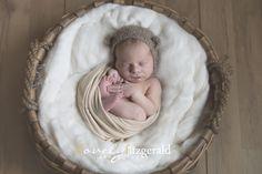 Newborn Basket Pose   Dallas Newborn Photographer   Newborn Photography Workshop