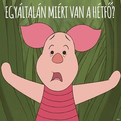 Hétfő Comic, Disney And More, Pooh Bear, Disney Dream, Disneyland Paris, Disney And Dreamworks, Funny Fails, Winnie The Pooh, Haha