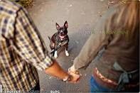 photo w/ dog