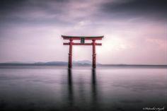 (Heaven's Gate)白鬚神社 Torii by Hidenobu Suzuki on 500px