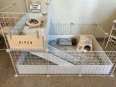 Good sized cage, but without the weird signs