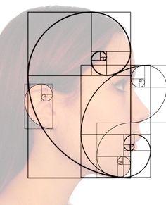 Golden Ratio and Fibonacci spiral in the human face Golden Ratio Huma . Fibonacci Sequence In Nature, Fibonacci Golden Ratio, Fibonacci Number, Golden Ratio Spiral, Divine Proportion, Flower Of Life, Art Tips, Art Techniques, Art Tutorials