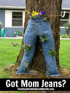 Clever Container Gardening Ideas - Mom Jeans.