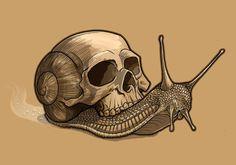 Skull Snail by TmoeGee.deviantart.com