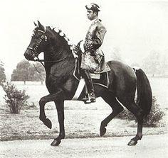 Doma clásica y caballos.: El maestro Oliveira.