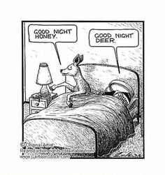 Funny pictures about Good night honey. Oh, and cool pics about Good night honey. Also, Good night honey. Good Night Honey, Funny Jokes, Hilarious, Grammar Funny, It's Funny, Funny Pics, Silly Jokes, Funny Images, Visual Puns