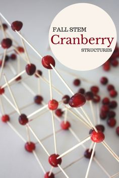 A simple Thanksgiving STEM activity building cranberry structures. A twist on a classic STEM challenge using cranberries and toothpicks to build towers. Thanksgiving Preschool, Fall Preschool, Thanksgiving Decorations, Thanksgiving Ideas, Holiday Ideas, Christmas Ideas, Holiday Activities, Science Activities, Science Experiments