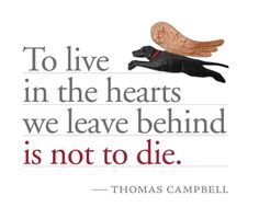 To live in the hearts we leave behind...
