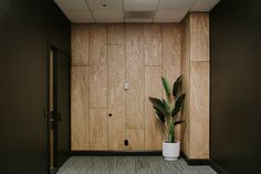 DIY Oak Plywood Accent Wall by Nadine Stay – turn a boring wall into a feature wall with vertical oak wood panels. Modern and retro style staggered accent wall with light oak wood. Speak Podcast Studio in Lincoln, Nebraska - DIY PLYWOOD ACCENT WALL Plywood Wall Paneling, Oak Plywood, Wood Panel Walls, Plywood Ceiling, Wood Cladding, Wood Slats, Plywood Design, Plywood Interior, Wall Trim