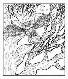 very advanced coloring pages | advanced coloring pages owl | Adult coloring pages | Pinterest