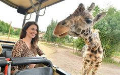 Chessington World of Adventures Resort introduced the zero-tolerance policy on animal print and brought in bouncers to enforce it.  Zookeepers noticed the trend for animal print clothing had caused animals to try to communicate with those wearing it or to run away in fear.  Zookee...