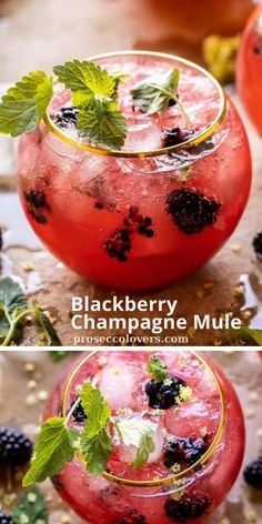 Pass the champagne! Make a refreshing Blackberry Champagne Mule with frozen blackberries, ginger beer, vodka and a splash of champagne! #Champagne #Champagnecocktails #Champagnedrinks #Champagnetime #Drinks #Cocktails #CocktailHour #CocktailOfTheDay #Craftcocktails #Proseccolovers #Winelovers #Masterofmixes #Barista #Champagnelover #DeliciousDrinks #Wine #Wineoclock #Mixology