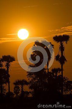 Sunset by James Adaickalasamy, via Dreamstime