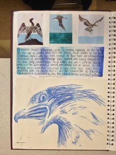 New gcse art sketchbook layout birds Ideas A Level Art Sketchbook, Sketchbook Layout, Textiles Sketchbook, Sketchbook Inspiration, Sketchbook Ideas, Art Deco Logo, Art Folder, Love Art, Art Lessons