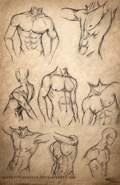 """Male Body Sketches"" - Vinnie 14, DeviantArt.com"