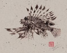 Dwight Hwang is an artist based out of Mission Viejo, CA who lived in Japan for many years specializing in traditional Japanese Art of Gyotaku. All of his original prints are done in the 'direct' style in which sumi ink is brushed directly onto the fish and then covered in calligraphy rice paper.
