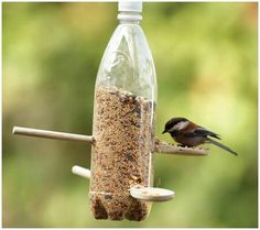 An empty bottle and a couple of wooden spoons, and POOF! bird feeder. Brilliant!