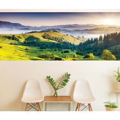 118 in. x 47.2 in. Horizon Panoramic Wall Mural, Green