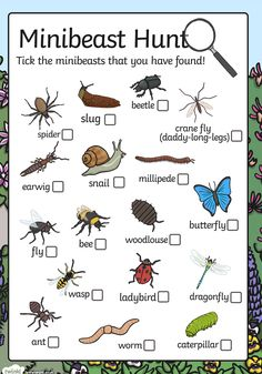 Going on a minibeast hunt? Don't go without this minibeast checklist! The list features some of the most common minibeasts, with boxes for children to tick. Forest School Activities, Nature Activities, Science Activities For Kids, Toddler Activities, Learning Activities, Family Activities, Teaching Resources, Outdoor Education, Outdoor Learning