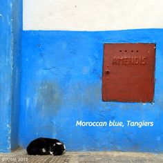 #Morocco Finding a quiet corner... I've missed you Tangiers! Discover the Sights and Scents of Morocco on Toma Tours very special boutique day  trip to Tangier offering a new insight into the heart and soul of Morocco.