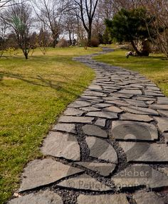 Stone path of Japanese Garden