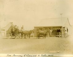 Reminiscences of the Old Coaching days by Alderman T. Coyle, of Annandale, a native of Llandilo (New South Wales). Australian Road Trip, Penrith, Historical Pictures, Horse Stuff, South Wales, Road Trips, Sydney, Coaching, Buildings