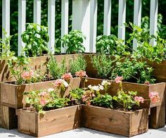 These fun and functional DIY herb gardens are perfect for both homeowners and renters. Whether you have a large outdoor area or small space on your kitchen countertop, these planters fit everyone's needs./