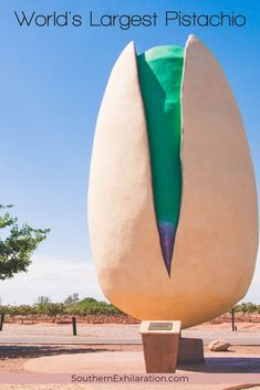 Created in 2008, the World's Largest Pistachio is located on pistachio farm in Alamogordo, New Mexico, and stands 30 feet tall. #RoadsideAttractions #NewMexico Alamogordo New Mexico, Pistachio Tree, Gallon Of Paint, Southwest Usa, Roadside Attractions, Travel Usa, Worlds Largest, Squad, Traveling By Yourself
